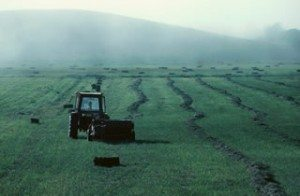 Agriculture-Farmer_working_in_field_Le_Bic_Quebec_Canada